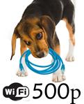 Настройка WiFi-роутера TP-Link TL-WR543G