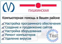 компьютерная помощь на дому спб метро Пушкинская